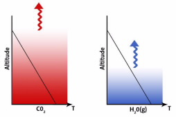 CO2 & H2O distribution