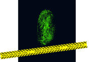 yellow crime scene tape with red & blue lights in the background