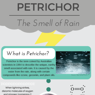 Petrichor - The Smell of Rain