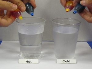 Putting yellow and blue food coloring into hot and cold water