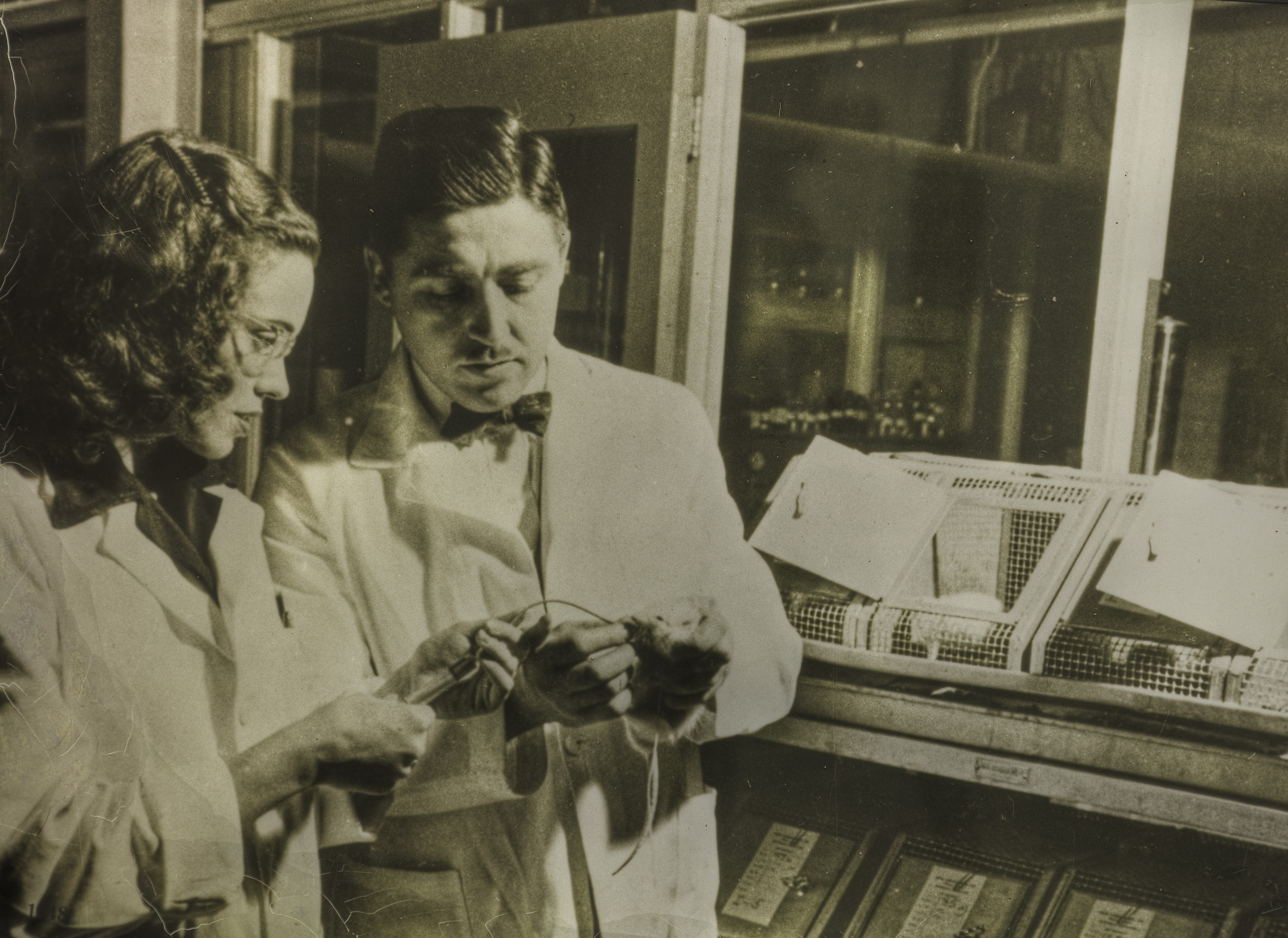 Helen and Al Free in Miles Laboratories.