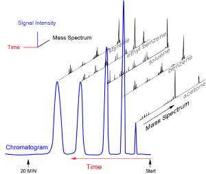 Gas chromatogram of a mixture, with mass spectra of individual components.