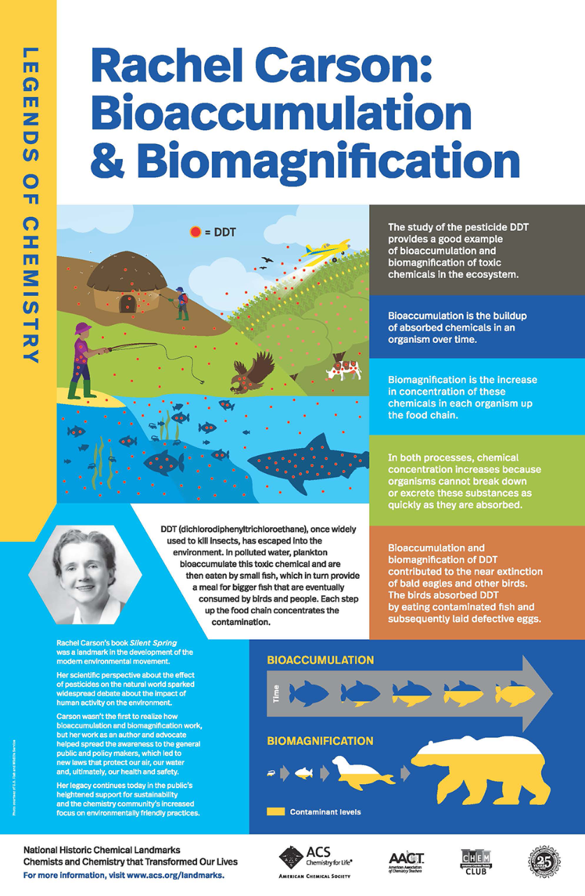 link to poster about Rachel Carson's work on bioaccumulation and biomagnification