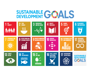 Sustainable Development Goals - colorful chart