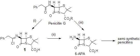 Industrial synthesis of penicillin
