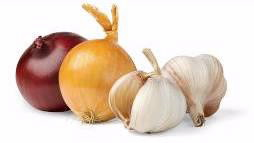 Onions and garlic.
