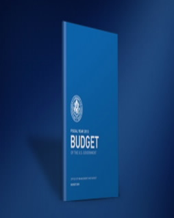 U.S. Office of Management and Budget 2013 cover
