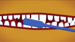 cartoon of tooth brushing