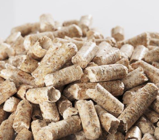 Types Of Wood Pellets ~ Burning biomass pellets instead of wood or plants in china