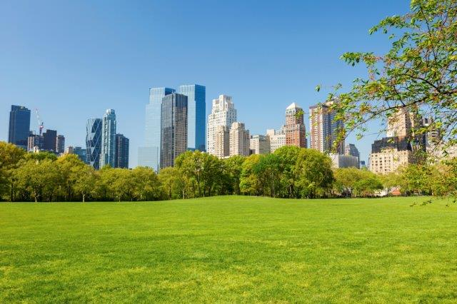 Green Space Can Make People Happier For Years American