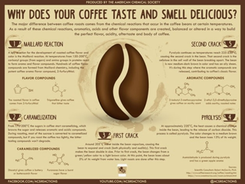 Why Does Your Coffee Taste and Smell Delicious?