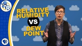 Why Does Humidity Feel Gross? image