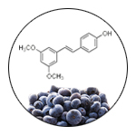 Natural Product Chemistry: Benefits of Pterostilbene on Health, Memory, and Anxiety image