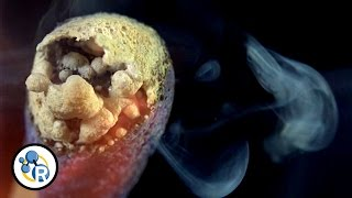 The Chemistry of Matches (In Slow Motion) image