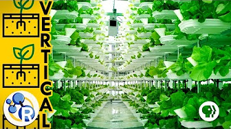 Is this the Farm of the Future? image
