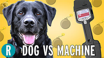 Dog vs. machine: Who's a better bomb detector ? image